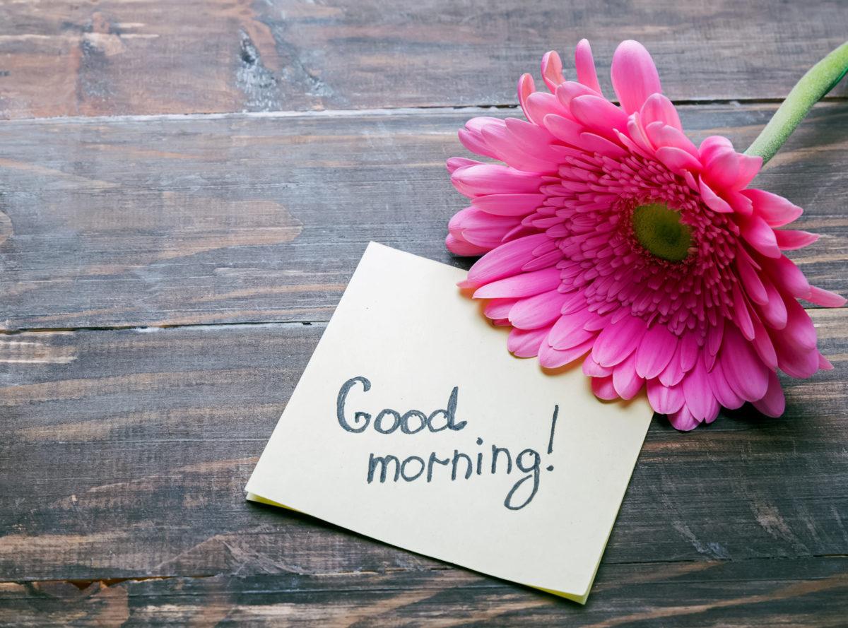 Citate Motivationale Despre Fotografie : 15 citate de dimineață care îți fac ziua mai frumoasă
