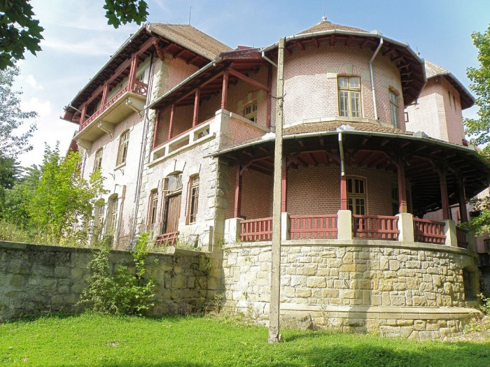 Palatul-Stirbei-din-Darmanesti-