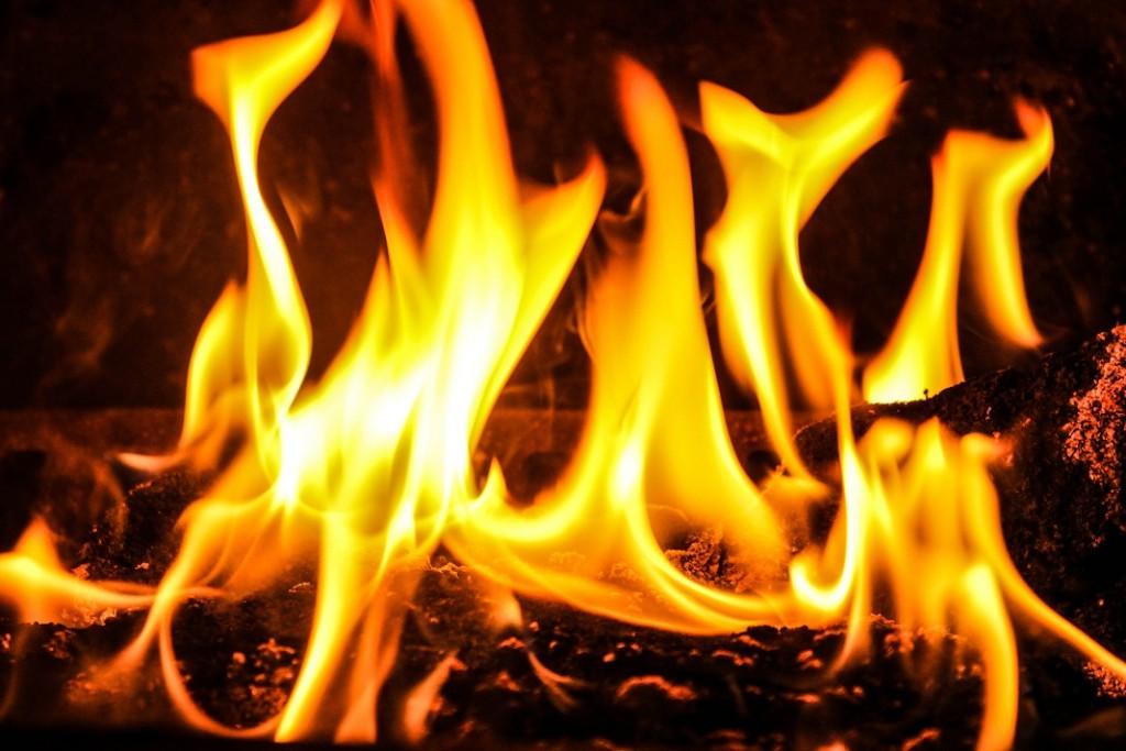 foc-in-semineu_56956936