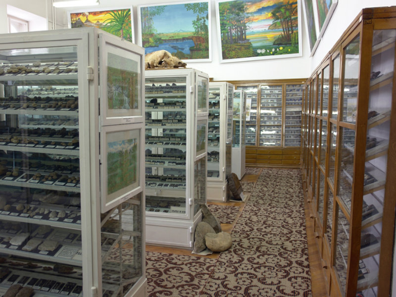 muzeul de paleontologie