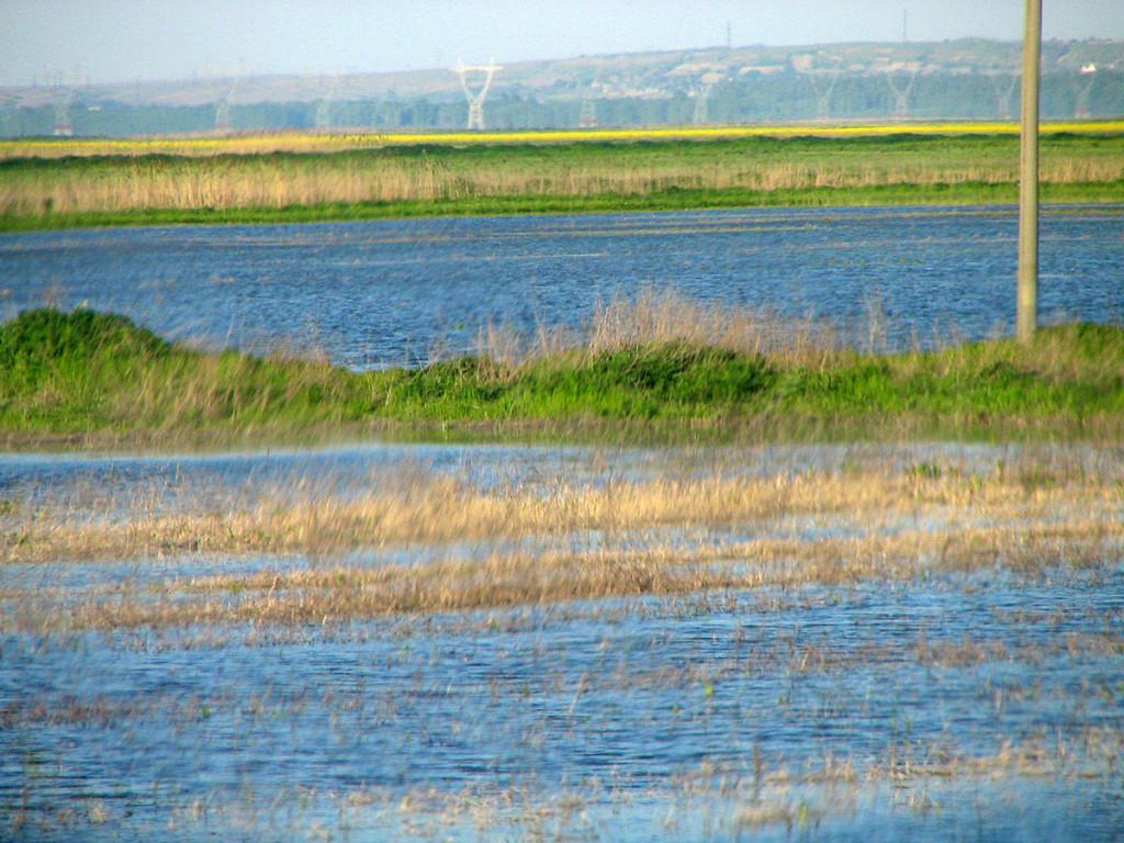 Balta_Ialomiţei_flooded_02_bgiu