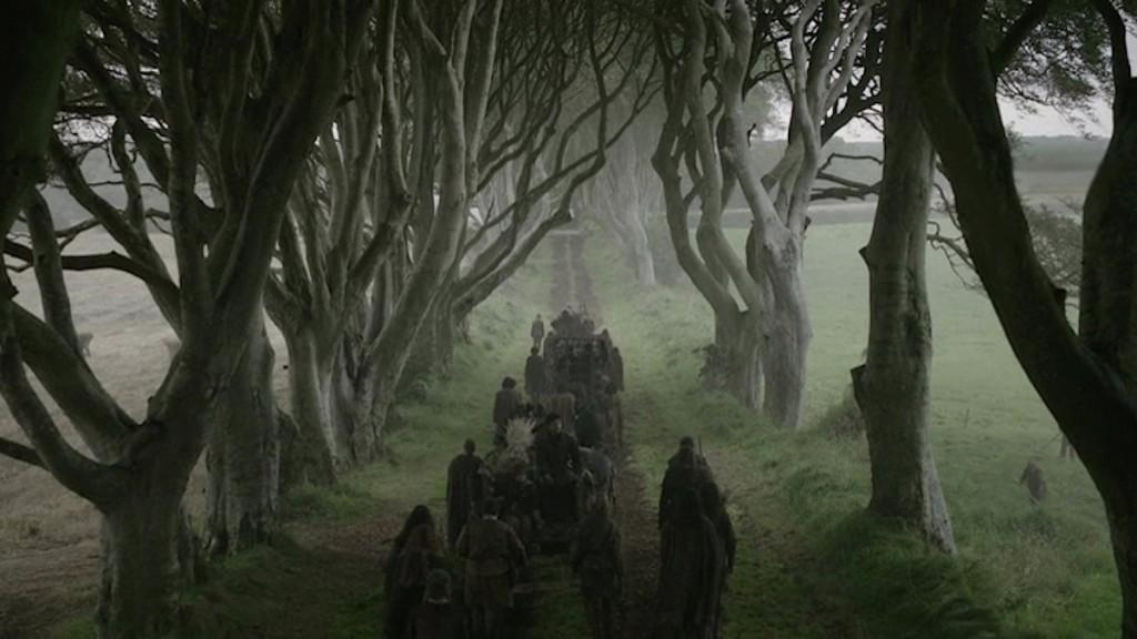 dark hedges GOT