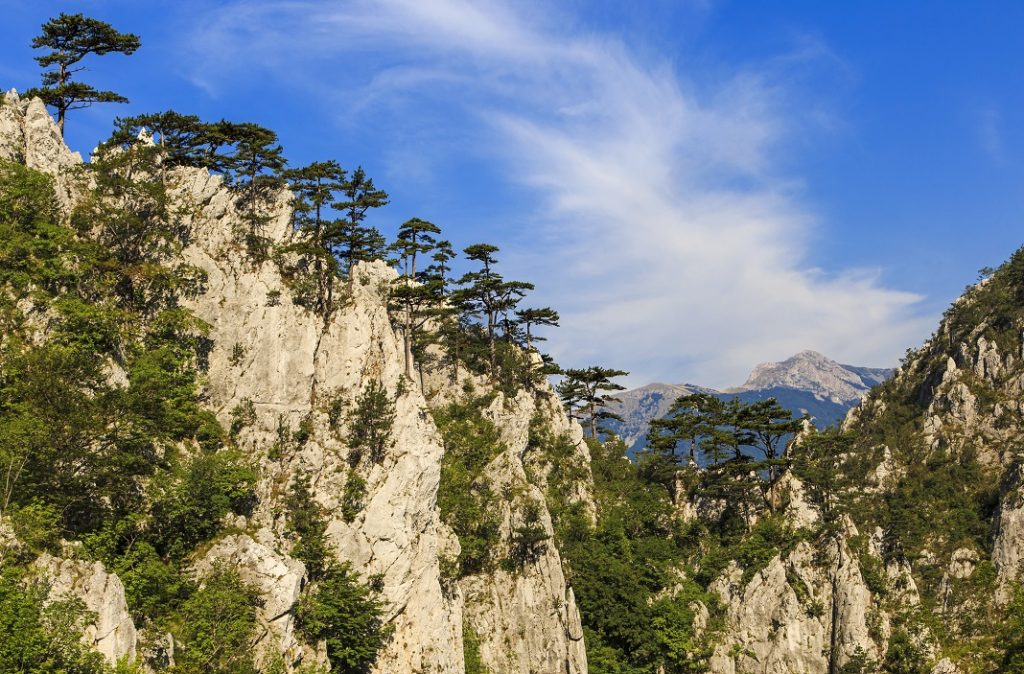 parcul-national-domogled-valea-cernei_68687817