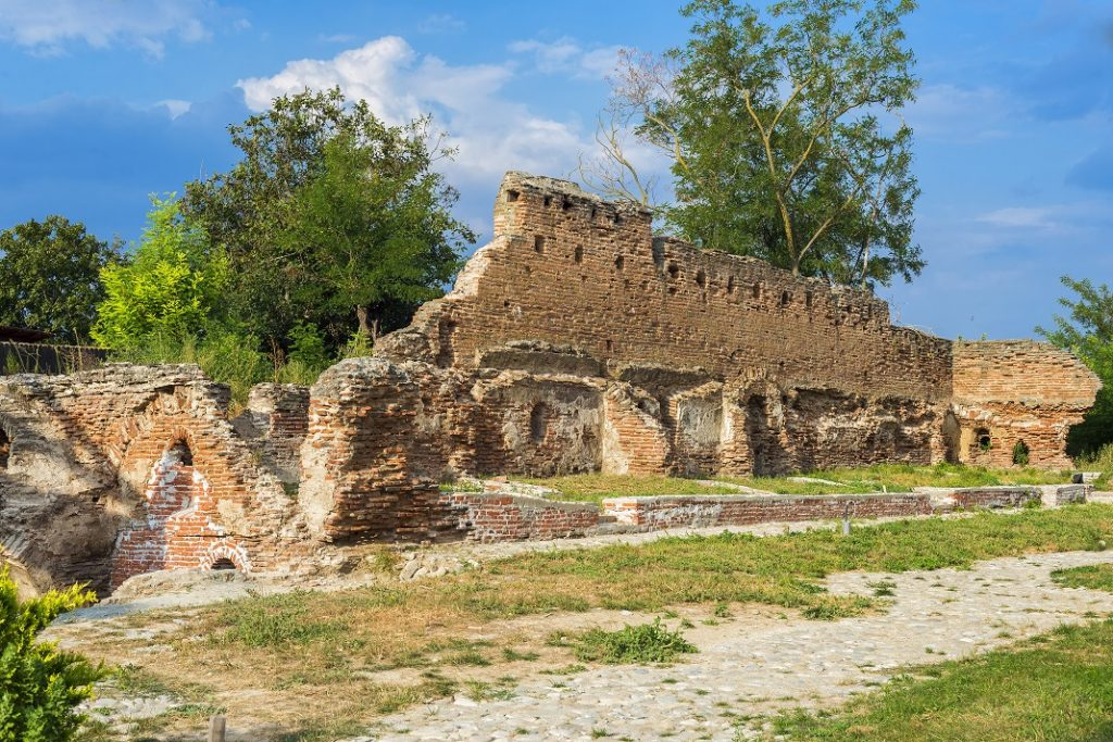 ruinele-manastirii-negoiesti_45356540