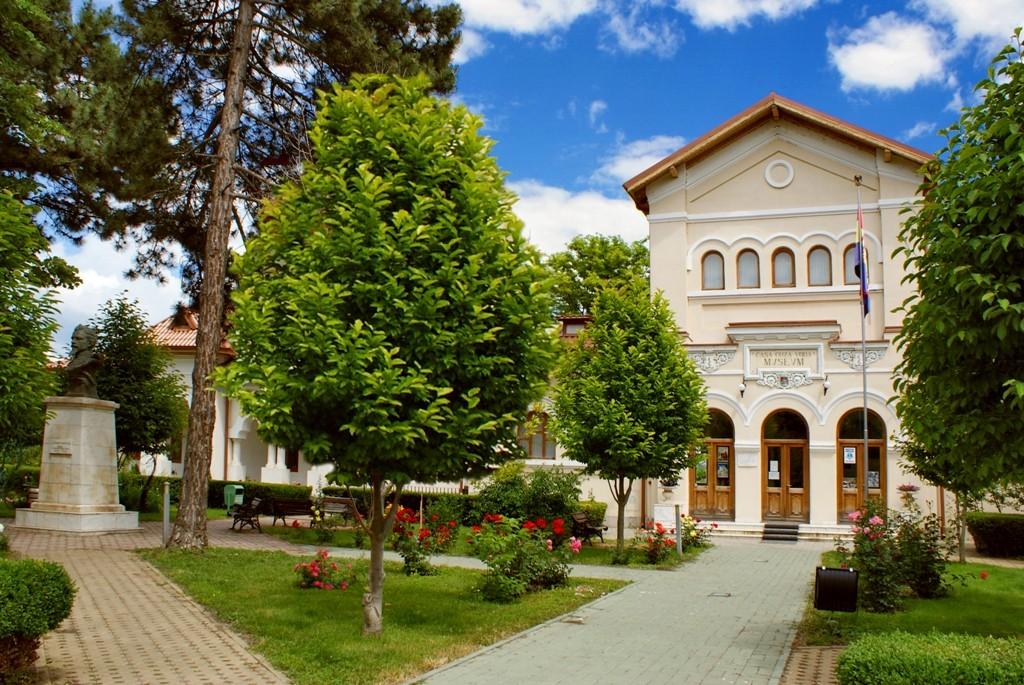 Muzeul-Casa-Cuza-Voda