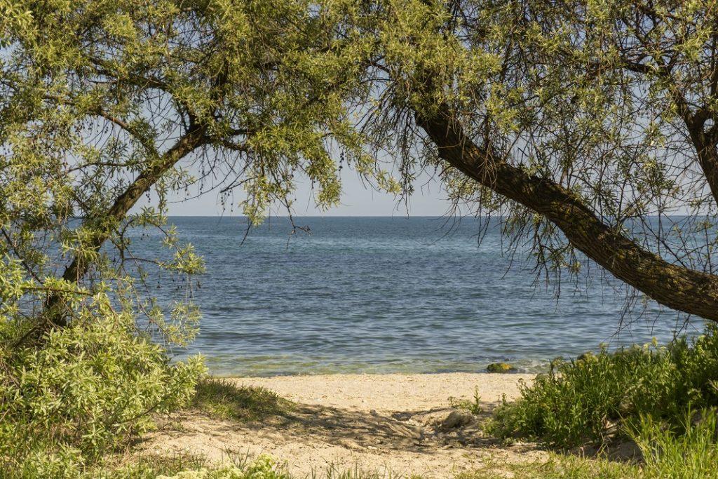 rezervatia-dune-agigea-romania_70846831