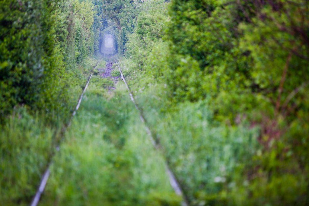 tunelul-dragostei-romania_56045295