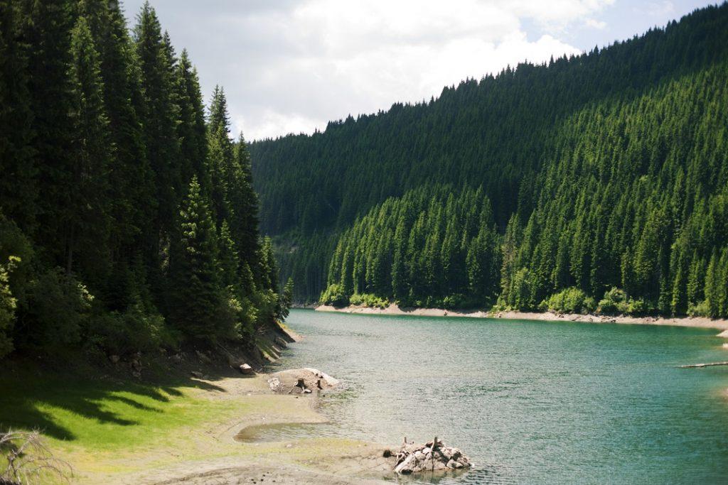 lacul-bolboci-dambovita_56503645