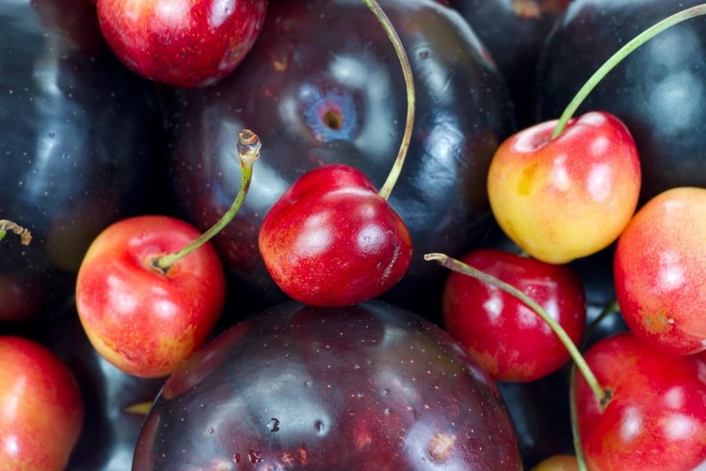 prune-si-cirese_25731806