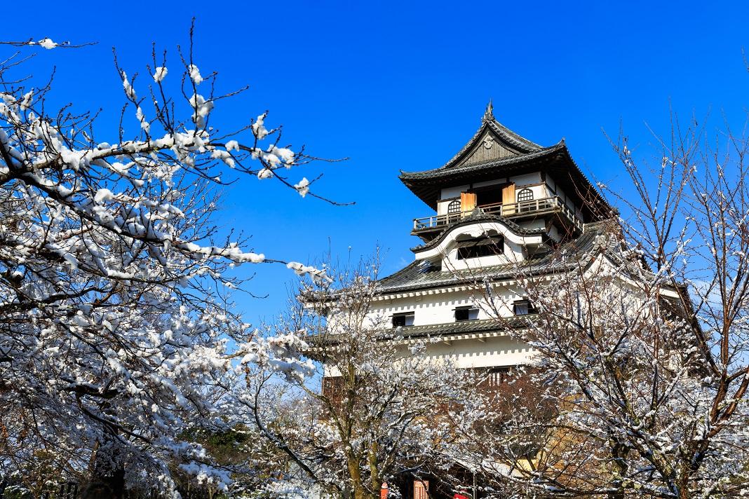 Castelul-Inuyama_48772585