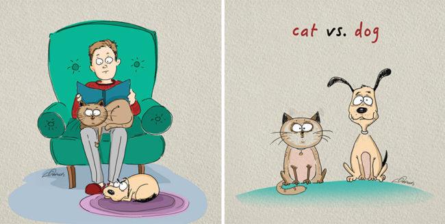 Câini sau pisici?