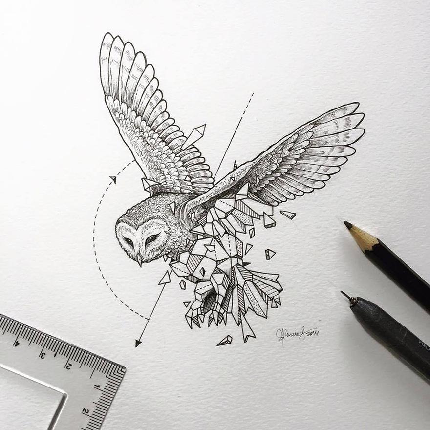 geometric-animal-drawings-wild-beasts-illustrations-kerby-rosanes-13__880