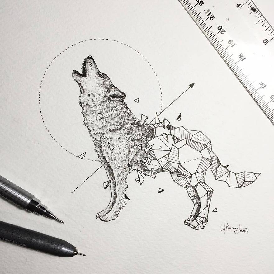 geometric-animal-drawings-wild-beasts-illustrations-kerby-rosanes-15__880