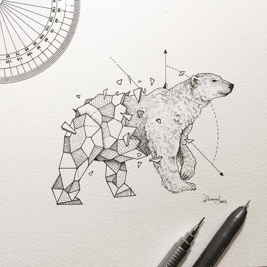 geometric-animal-drawings-wild-beasts-illustrations-kerby-rosanes-23__880