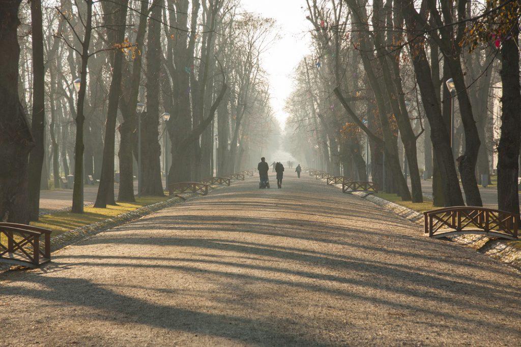 parcul-central_41153567