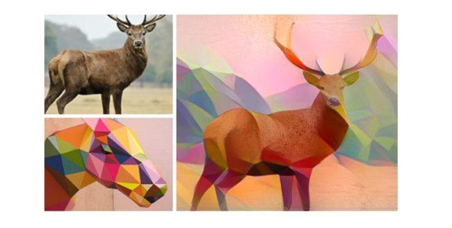 Imagini spectaculoase rezultate din combinarea a două imagini diferite
