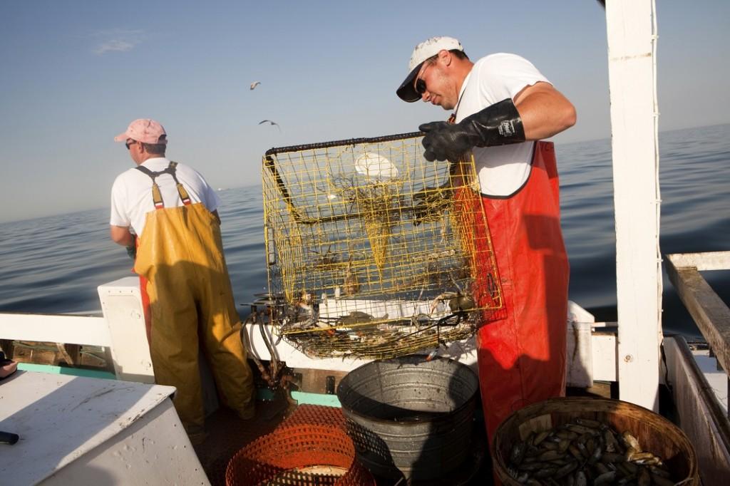 pescari_42971155