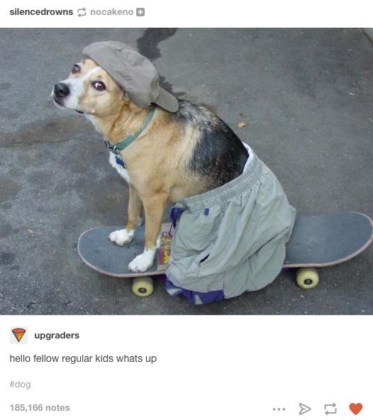 copil skateboard