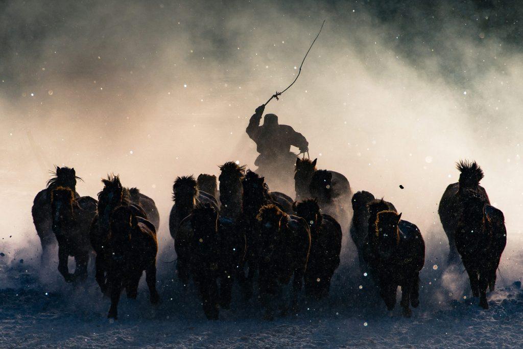 Winter Horseman