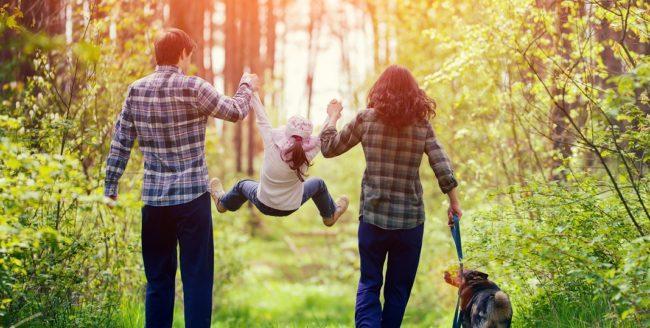 De ce e bine să te plimbi în natură
