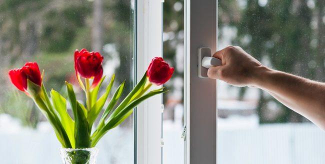 Cum alegi ferestrele pentru noua ta locuință