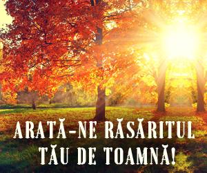 banner-site-rasarit2