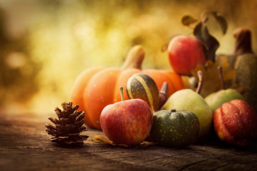 fructe-de-toamna_33477507