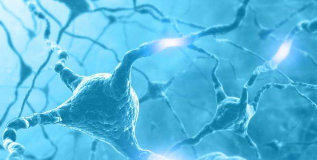 Trei obiceiuri care dăunează neuronilor
