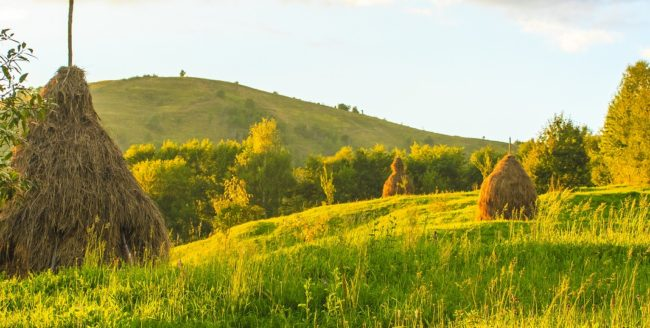 Roșia Montană, mai aproape de a fi patrimoniu UNESCO