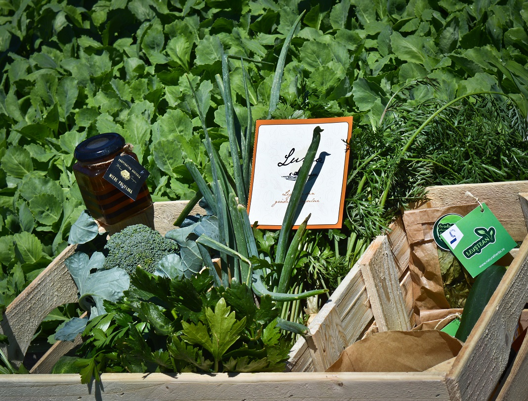 legume lunca somesului