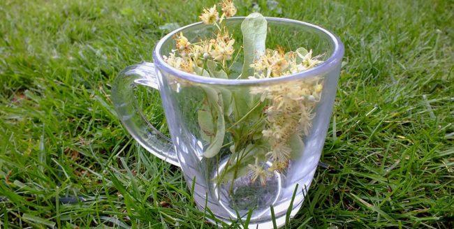 Dacă bei ceaiuri din anumite plante medicinale scapi de insomnie! Cum procedezi?