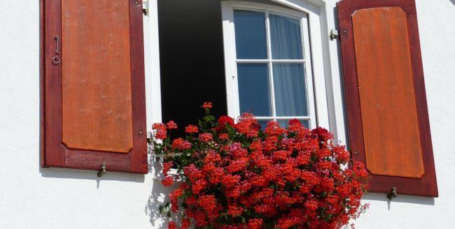Cât de sănătos este aerul din casa ta?